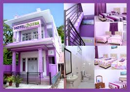 Hotel Laut Jaya Hotel Citra Penginapan Di Sabang