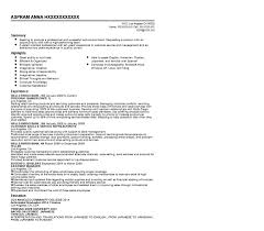 Pongo Resume Examples Of Resumes Pongo Resume Game Free Builder With Tips 14