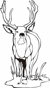 Small Picture Deer Coloring Page Free Printable Pages Caribou Caribou Deer