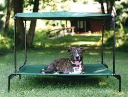 Outdoor Dog Bed With Canopy Large W Raised Elevated Pet Cot Kennel ...