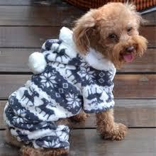 <b>Dog Clothing</b> & Shoes_Free <b>shipping</b> on <b>Dog Clothing</b> & Shoes in ...