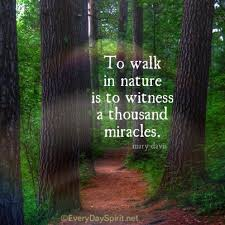Famous Quotes On Nature Beauty Best of To Walk In Nature Words Pinterest Nature Quotes