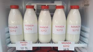 manda sütü ile ilgili görsel sonucu