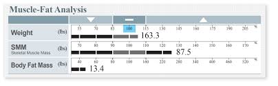 Muscle Mass Chart Female Skinny To Obese Chart Body Fat