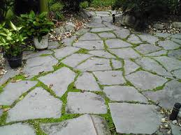 Delighful Flagstone Patio Moss With Creative Outdoor Design Intended Beautiful Ideas