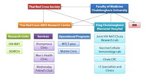 Umbrella Organization Chart Organizational Structure Trc Arc