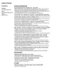 Copywriter Resume Resume Josh Perlow 60