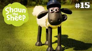 Quan Sát Động Vật - Những Chú Cừu Thông Minh [Wildlife Watch] - YouTube