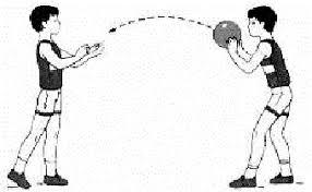Контрольная работа по физкультуре класс В