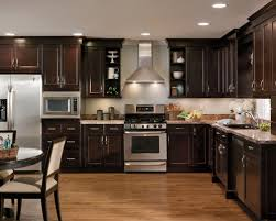 Fine Dark Kitchen Cabinets Colors Lovable Stunning And Design