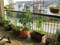 Apartment Patio Garden Best Small Apartment Patio Ideas On A Module 34