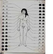 Erogenous Zones Described In Old Sanskrit Literature