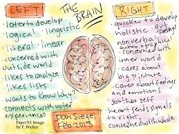 Whole Brain Child Chart Brain Research The Mindful Classroom