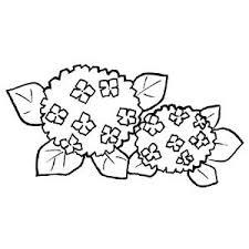 イラスト素材 アジサイ の カット絵 150 梅雨の紫陽花 Naver まとめ