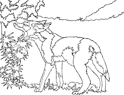 Small Picture coyote coloring free page Coloring Pages for Free 2015