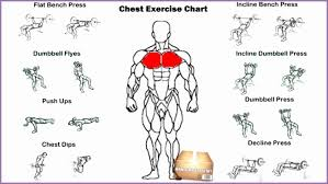 Chest Chart Gym Specific Chest Chart Workout The Rock Hard Pecs Workout