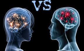 el cerebro entre hombres y