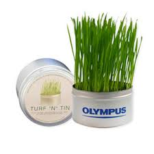 unique green promotional turf n tin