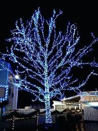 awesome outdoor led lights for trees and fashionable lights outdoor awesome and beautiful tree wrap lights