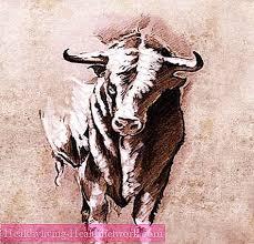 Býčí Hlava Tetování Býk