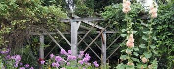 arbor garden. Garden Arbor With Flowers