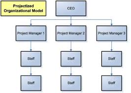 Advantages Of Different Org Structures On Marketing Project