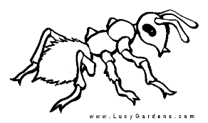 Small Picture Ant Coloring Pages Ants The Garden For Print Bebo Pandco