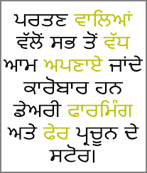 Punjabi Language Punjabi Subtitling Services Punjabi Subtitle Translations