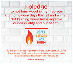 Check Before You Burn Pledge Form