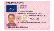 Guide Licence Check Training Driver