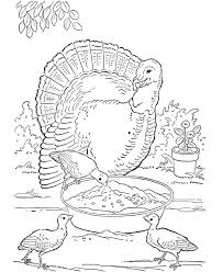 Small Picture 339 best Colouring pages images on Pinterest Drawings Coloring