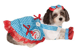 Rubies Dog Costume Size Chart Wizard Of Oz Dorothy Pet Costume
