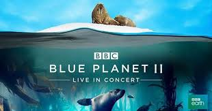 blue planet ii is touring to the echo arena dates tickets and everything you need to know liverpool echo