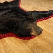 black bear full size taxidermy rug 13378 for the taxidermy