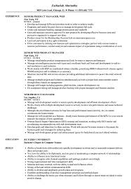 Web Product Manager Sample Resume Web Product Manager Resume Samples Velvet Jobs 15