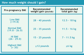 Weight Gain During Pregnancy Chart In Kg How Much Weight To Gain During Pregnancy Visit Blarney
