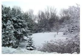 Image result for ontario winter