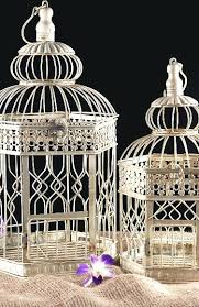 vintage bird cage vintage glass bird cage feeders