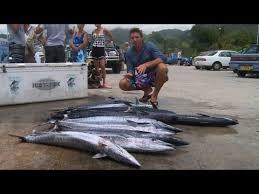 Samoan Fish Chart Deep Sea Fishing The Cook Islands Travel Video Guide Youtube