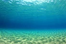 Underwater Background In Ocean Photographic Print By Rich Carey Art Com