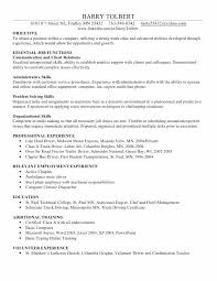 Computer Skills On Resume Examples Skills Resume Samples Free