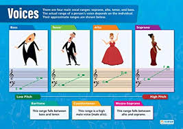 Voices Music Posters Gloss Paper Measuring 33 X 23 5 Music Charts For The Classroom Education Charts By Daydream Education