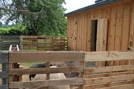 Pig Enclosure Design How To Build A Mini Pig Pen Using Pallets In Under 60