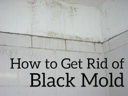 how to get rid of mold on bathroom walls how to rid of mold in car