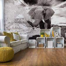 Elephant Highway Black And White Wall ...