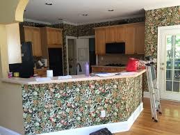kitchen remodel east cobb