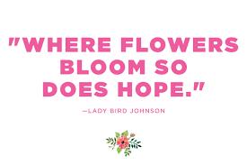Inspirational And Short Flower Quotes Golfiancom