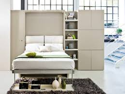 Ultra Modern Murphy Beds