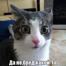 """Стандарти роботи російської журналістики: """"За слова відповідаєш? Тоді бий"""" - Цензор.НЕТ 4596"""