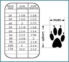 Big Dog Size Chart Denim Sandals